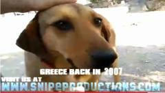 cainele protestelor din grecia