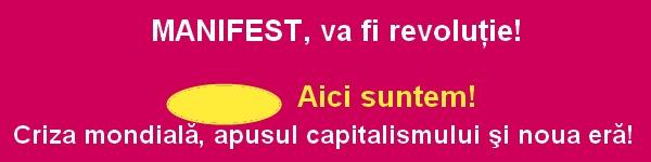 apusul capitalismului